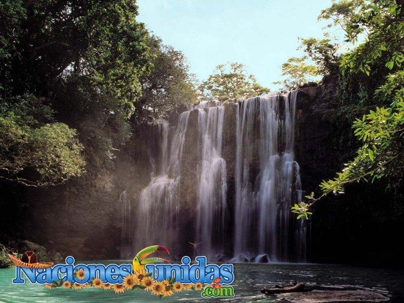 aventura en la selva iv