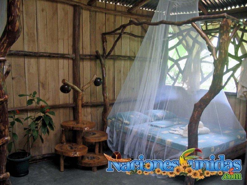 rainforest bungalows