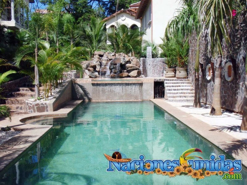 rainforest costa rica pool